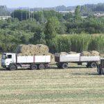 La fatica agricola è sottopagata (Il Giardiniere)