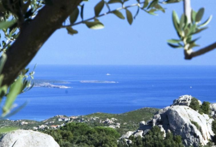 AMBIENTE, Istituita la Scuola per il Paesaggio della Sardegna