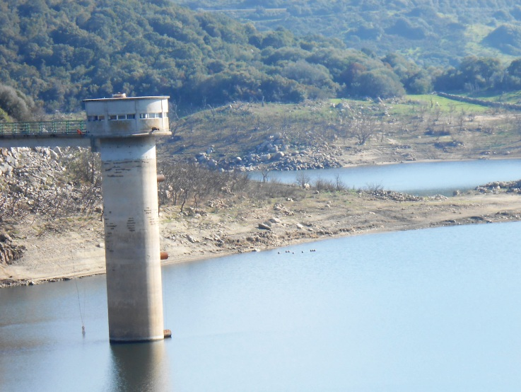 """GALLURA, Marrone (Consorzio di Bonifica): """"Si preannuncia un'estate di restrizioni idriche"""""""
