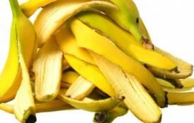 CAESAR, Le 'bucce di banana' dell'aspirante Governatore Puddu