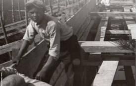 AMBIENTE, Centenario della bonifica della Piana di Terralba-Arborea: mostra e convegno