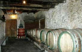 """ATZARA, Da oggi a domenica """"Territori del vino e del gusto"""". Sindaco Corona: """"Importante vetrina per il territorio"""""""
