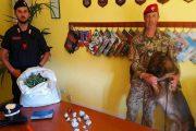 ARZANA, Oltre 2,4 chili di marijuana coltivata in casa: arrestato 20enne