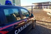 SULCIS, Deteneva munizioni da caccia: denunciato allevatore di Tratalias. Fucile trovato a San Giovanni Suergiu