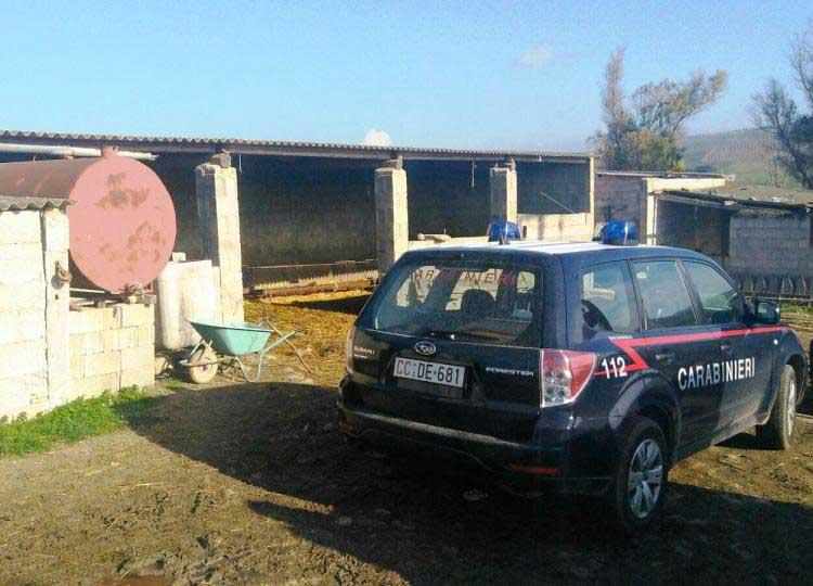 MARMILLA, Sgominata banda dedita a furti: in carcere due uomini di Villamar (VIDEO)