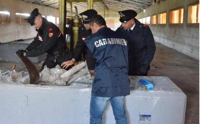 CAGLIARI, Sequestrati 400 chili di hashish, valore circa 3 milioni: arrestato imprenditore piemontese (VIDEO)