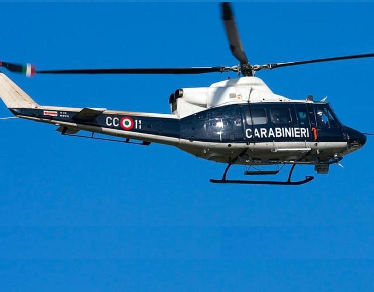OLBIA, Un elicottero dei Carabinieri individua orto di marijuana: arrestato 25enne di Telti