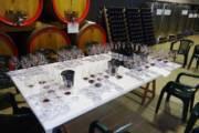 GIBA, Appunti di degustazione: dieci anni di Carignano