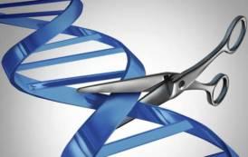 Chi ha paura di Crispr? Corregge gene che provoca talassemia, ma non solo (Veronica Latini)