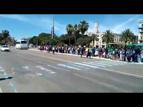 """Il VIDEO dei croceristi in fila sotto il sole: """"Un disservizio incredibile"""" (Paolo Casta)"""