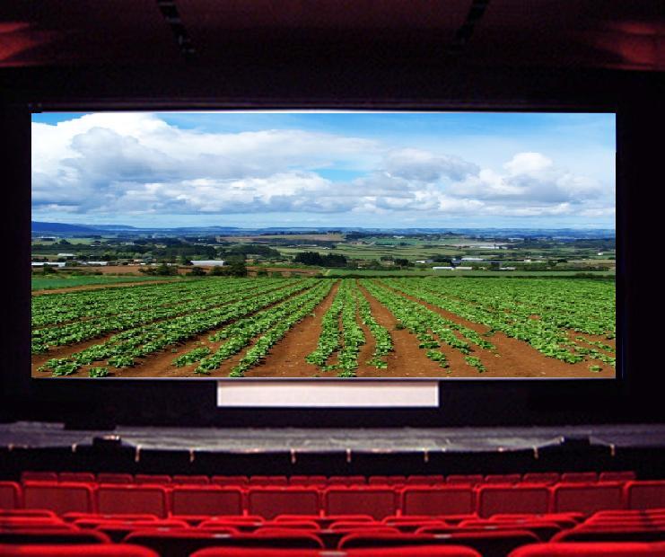 COCHISE, Il film dell'agricoltura sarda trasmesso in esclusiva per Pigliaru e Falchi