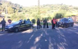 SARRABUS, Controlli antidroga davanti alle scuole di Villaputzu e Muravera: trovata marijuana nascosta nei cespugli