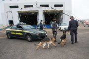 OLBIA, Arrestata 19enne romena fuggita dagli arresti domiciliari a Palermo