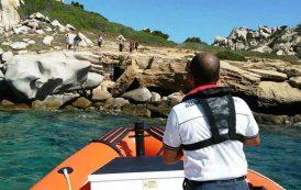 SANTA TERESA GALLURA, Bagnanti aggrediti in spiaggia da alcuni cani