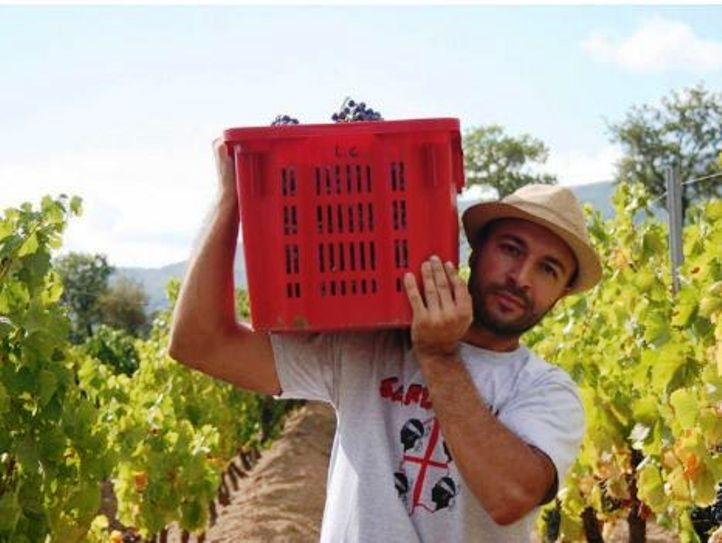"""MAMOIADA, Luca Gungui, giovane imprenditore vitivinicolo: """"Nella nostra azienda produciamo Cannonau di nicchia"""""""