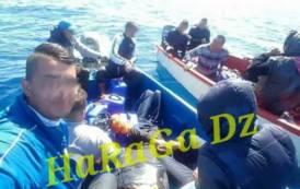 """ANDY CAPP, Su Facebook """"HaRaGa Dz"""": tour operator degli algerini che arrivano in Sardegna"""