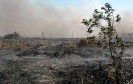 Le prospettive poco rassicuranti della macchina antincendio (Ignazio Masala – Fendres-Safor)