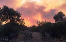 La mia Sardegna brucia e voi brucerete all'inferno per l'eternità (Fabio Barbarossa)