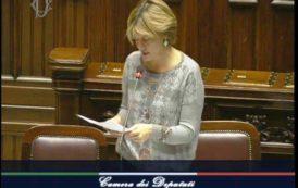 ARSENICO, Sulla circolare sanitaria il ministro Lorenzin risponde, le domande restano