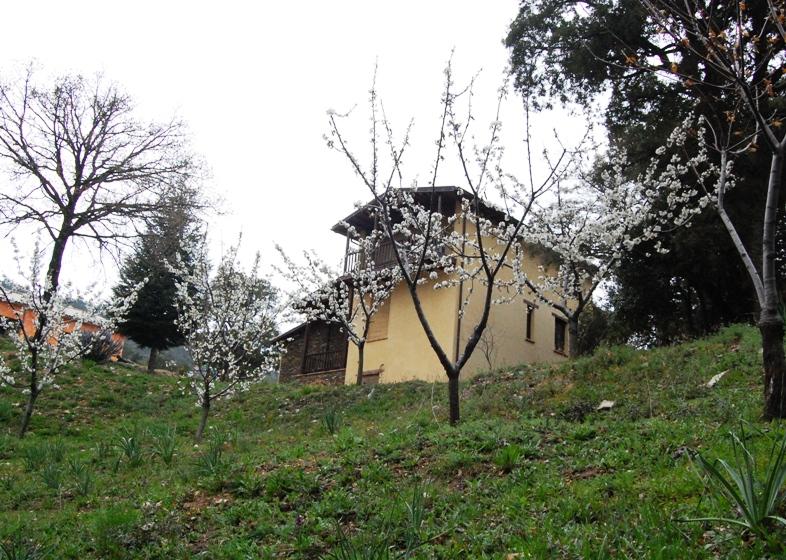 """BELVI', Un esempio di multifunzionalità biologica: l'azienda agricola """"Mandaritzò"""". Pietro Vacca: """"Produciamo prodotti di nicchia"""""""