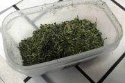 QUARTU SANT'ELENA, Coltivava piante di marijuana: arrestato pregiudicato 26enne
