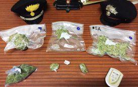 TORTOLI', Coltivava e spacciava droga: arrestato 41enne