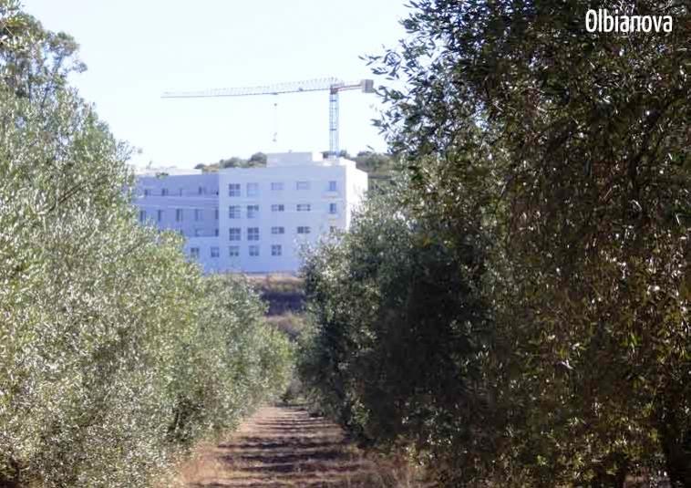 MATER OLBIA, Ministro Lorenzin annuncia ulteriore deroga per agevolare l'apertura dell'ospedale