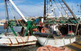 SANT'ANNA ARRESI, Percepiti indebitamente 15.000 euro per indennizzi pesca: denunciate due persone