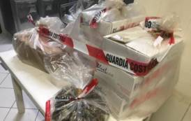 SARDEGNA, Controlli in pescherie e ristoranti di Olbia, Nuoro e Orosei: sequestrati 120 chili di prodotto ittico