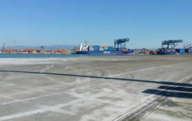 """CAGLIARI, Porto Canale. Zedda (FI): """"Preoccupazione per lavoratori. Pigliaru convochi un incontro tra le parti"""""""