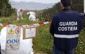 OLBIA, Rimozione e smaltimento di rifiuti pericolosi a Murta Maria