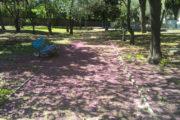 SASSARI, Tredici giovani migranti restituiscono alla città il parco di Casa Serena