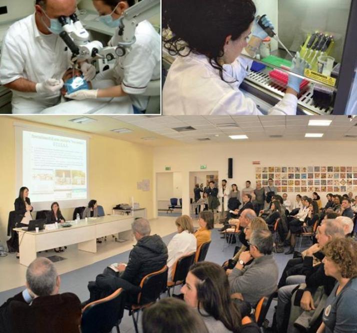 Giunta Pigliaru taglia non solo le borse dei medici, ma anche di altri specializzandi (Cisas Sardegna)