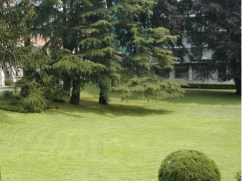 REGIONE,  Fratelli d'Italia lancia il 'baratto amministrativo' nei Comuni come tutela e valorizzazione del territorio