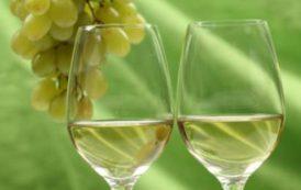 I nomi dei vitigni non sono tutelabili, si può tutelare solo la zona di produzione (Romano Satolli)