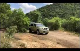 AMBIENTE, Raro esemplare di aquila liberato nel Parco di Gutturu Mannu (VIDEO)