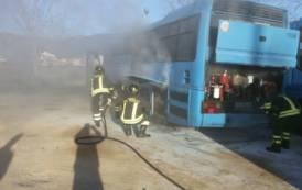 SAN VITO, In fiamme un autobus Arst, gravi i danni