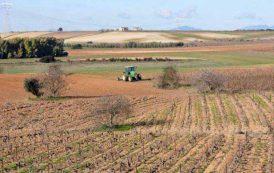 AGRICOLTURA, Grido d'allarme delle aziende per l'emergenza siccità nell'Alto Oristanese