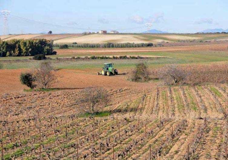 agricoltura13