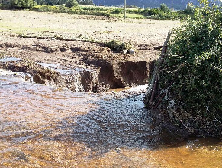 """ALLUVIONE, Coldiretti Gallura: """"Aziende agricole messe in ginocchio. Bisogna rivedere sistema di tutela del territorio"""""""