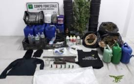 NURRI, Nascondeva armi per bracconaggio e coltivava cannabis: arrestato pregiudicato 33enne