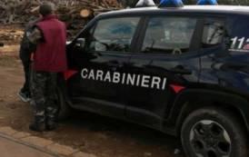 VILLACIDRO, Scoperti tre lavoratori irregolari in azienda di legnami: sanzione di 9.000 euro