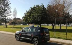 VILLACIDRO, Danneggia cartelli stradali e prato erboso del parco, poi si pente e risarcisce danno: denunciato 24enne