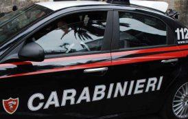 SINNAI, Rubano 14 conigli ed un tacchino a Settimo San Pietro: arrestati due giovani