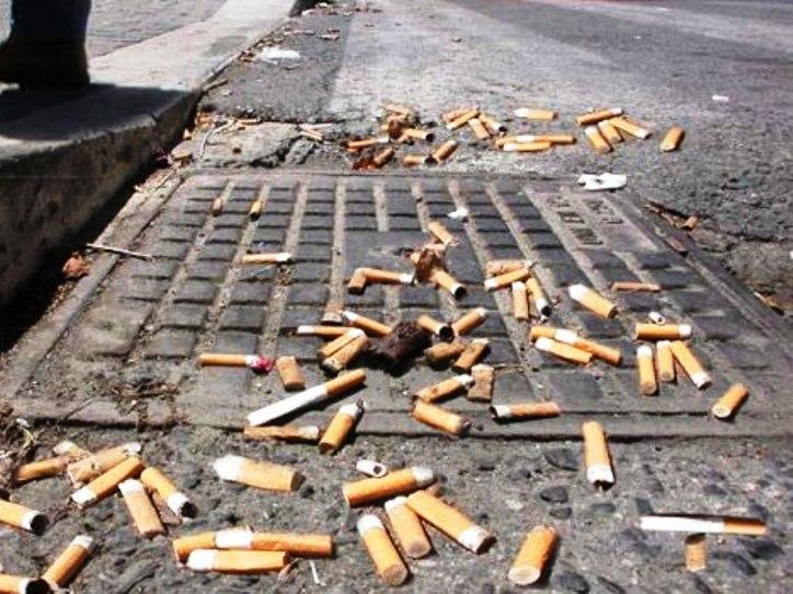 """AMBIENTE, Pinna (FdI): """"Multe per chi sporca le strade, ma i Comuni attrezzeranno la città di cestini?"""""""