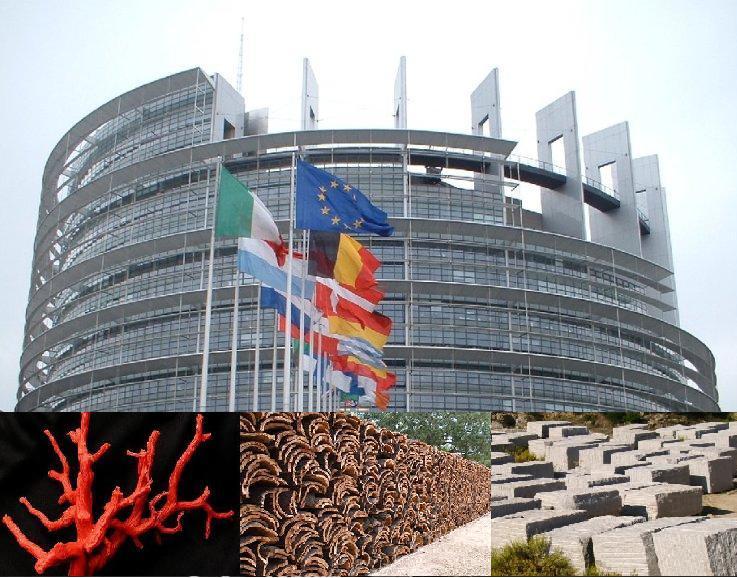 """EUROPA, Cicu (FI): """"Tutele per corallo, sughero e granito. Svolta per le economie dei nostri territori"""""""