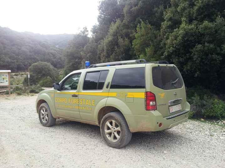 Sardegna 'Isola forestale', ma i problemi del Corpo Forestale sono ancora irrisolti (Ignazio Masala)