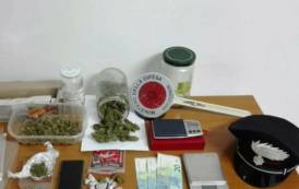 SETTIMO SAN PIETRO, Trovato in possesso di 143 dosi di marijuana: arrestato un 31enne