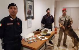 GUSPINI, Trovata in possesso di 800 grammi di infiorescenza di marijuana: arrestata 39enne incensurata