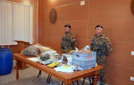 ORGOSOLO, Aveva nascosto quasi 3 chili di marijuana vicino al suo ovile: arrestato pastore 30enne